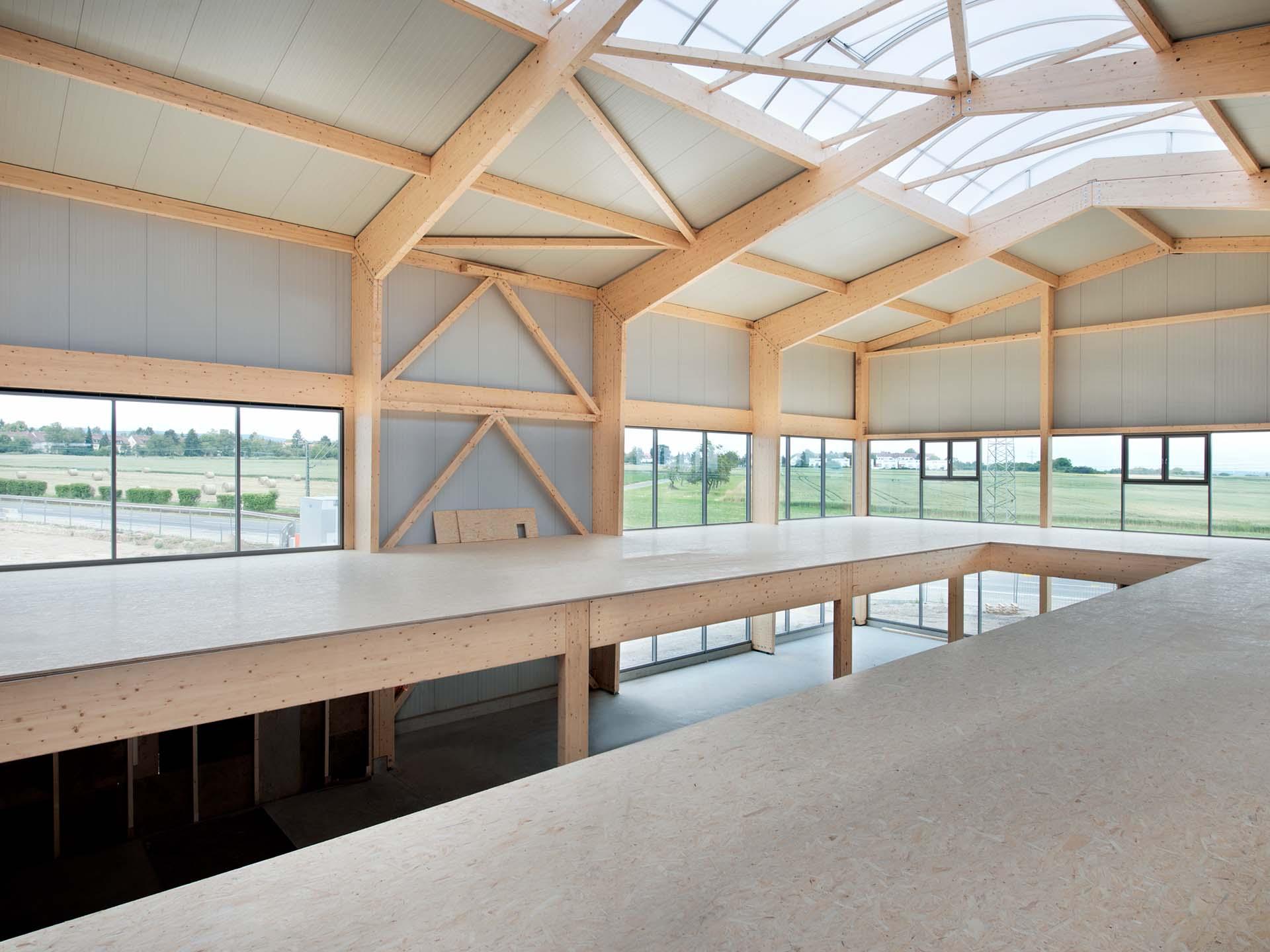 Innenansicht einer Holzhalle mit Zwischendecke und Lichtfirst.