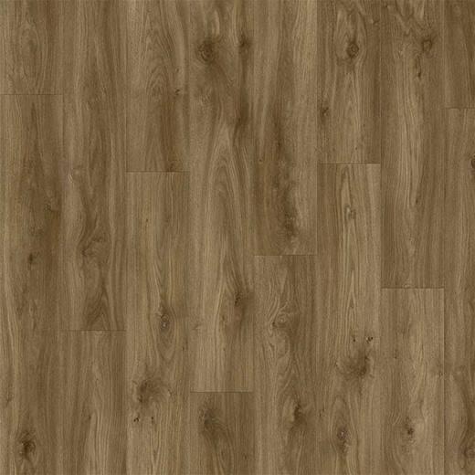 Moduleo Impress Sierra Oak 58876