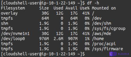 Disk usage for instance