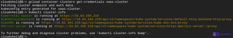 Output of kubectl cluster info