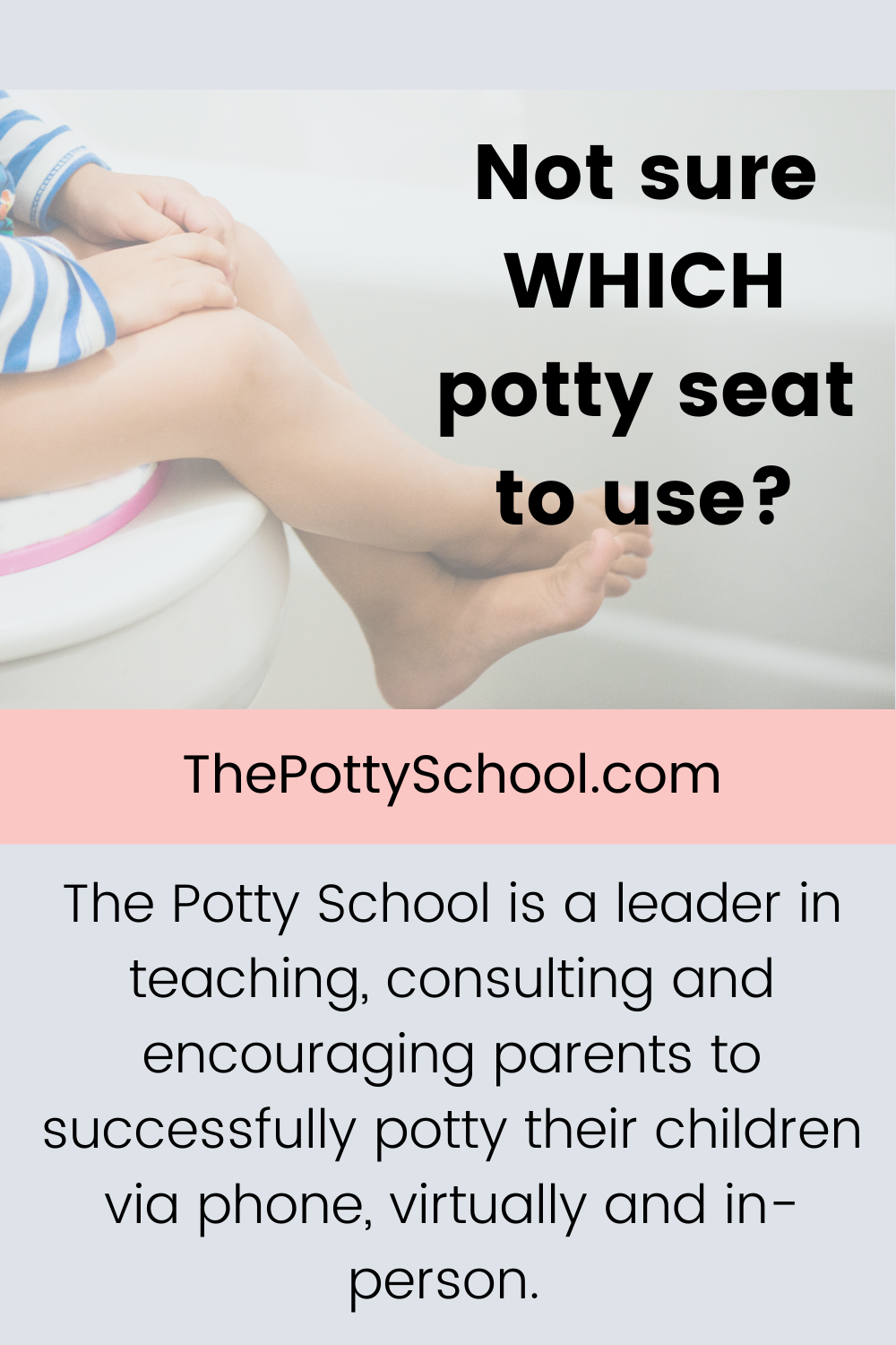 Not sure which potty seat to use? The Potty School potty training