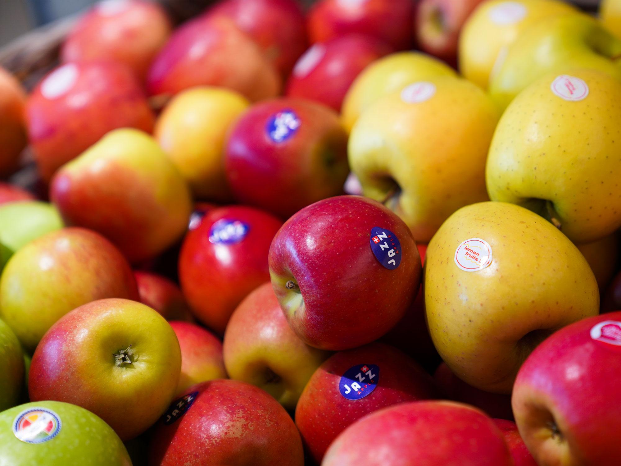 Frische Schweizer Äpfel