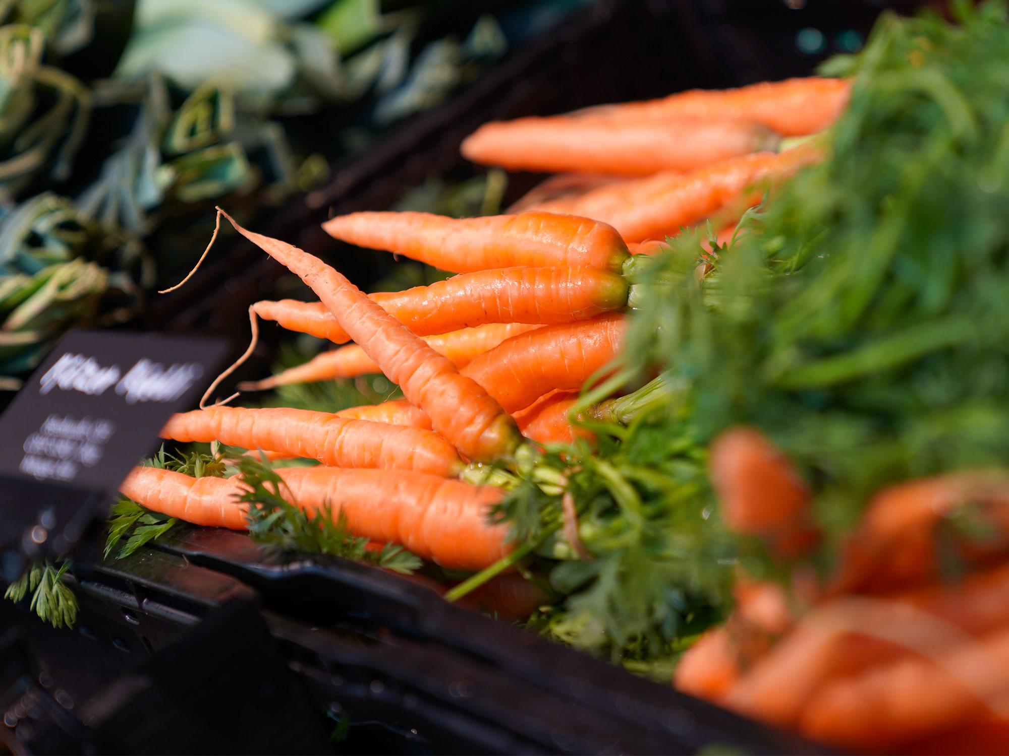 Frische Karotten aus dem Seeland