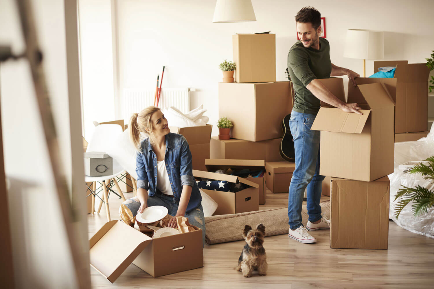 A couple moving into an apartment with their dog, unpacking their stuff from cardboard boxes