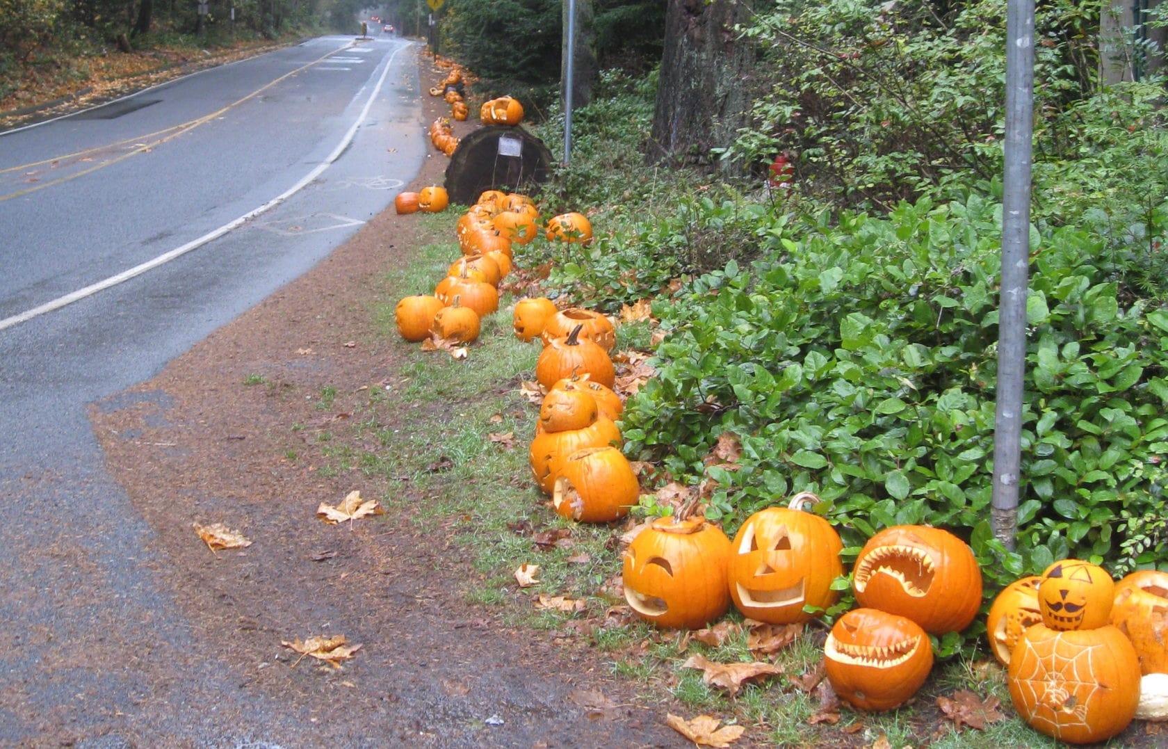 Happy Haunts: Zendrive's Tips For A Safe Halloween