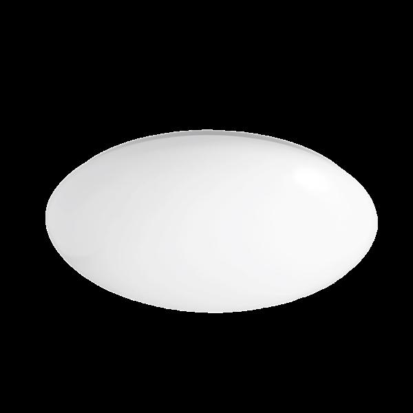 SAL Opal Oyster