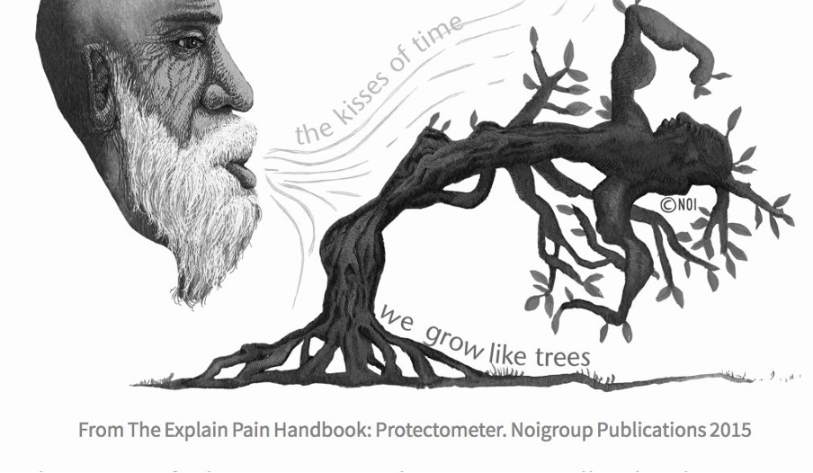 From Noigroup.A picture of a tree