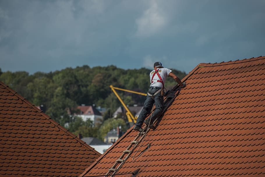roofers-roof-roofing-craft.jpg