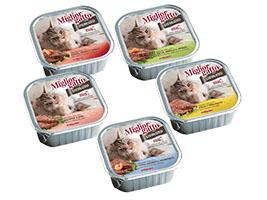 Miglior Gatto Sterilized
