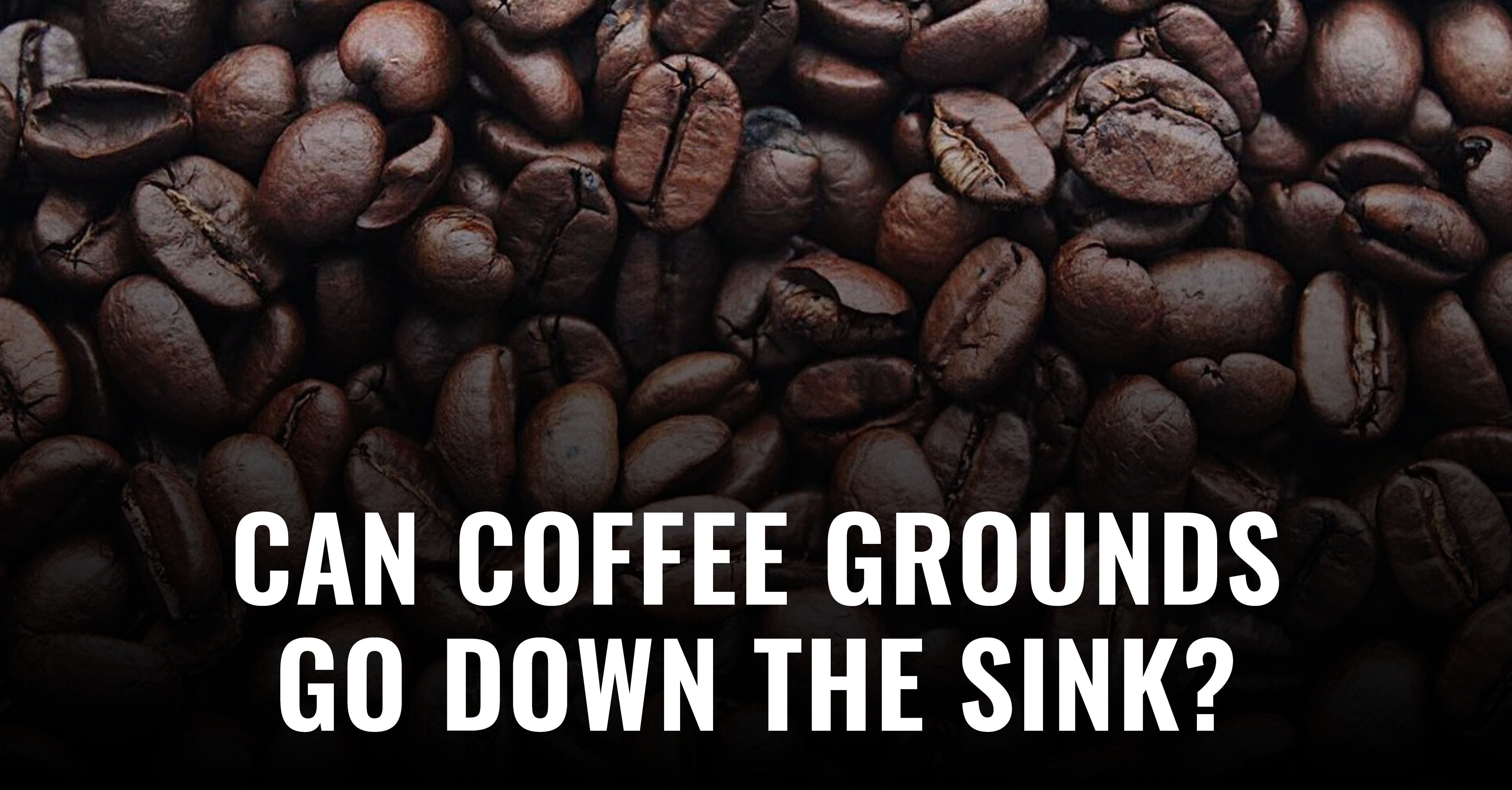 Can I Pour Coffee Grounds Down the Sink?