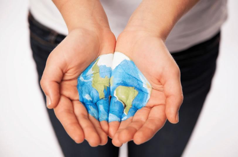 St. Vincent De Paul: 2016 SVDP & CharityTracker Report