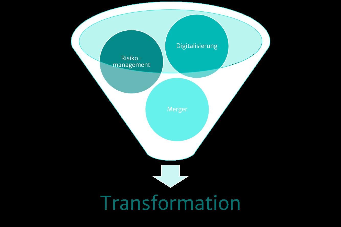 Illustration Transformation