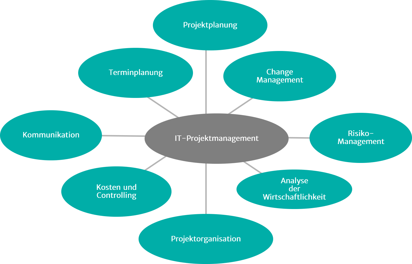 Illustration zu IT-Projektmanagement
