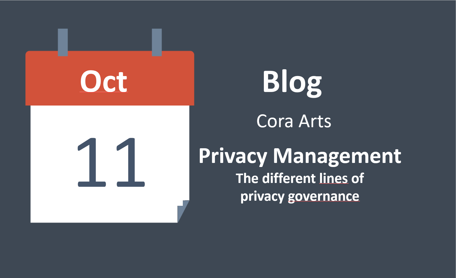 Privacy management: the different lines of privacy governance
