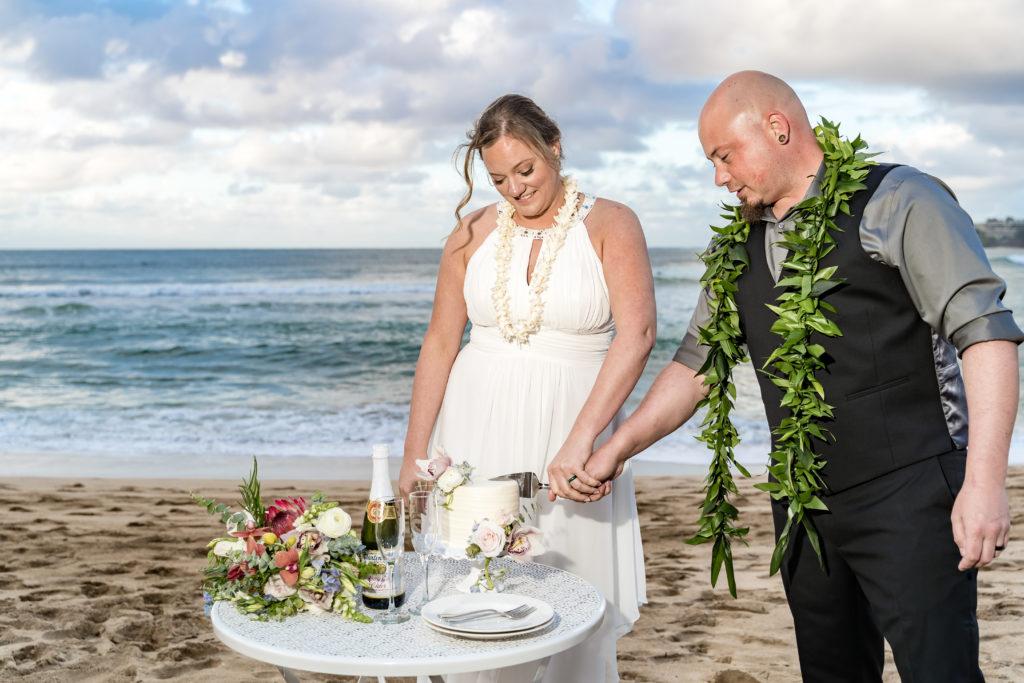 Husband and Wife cutting their wedding cake.