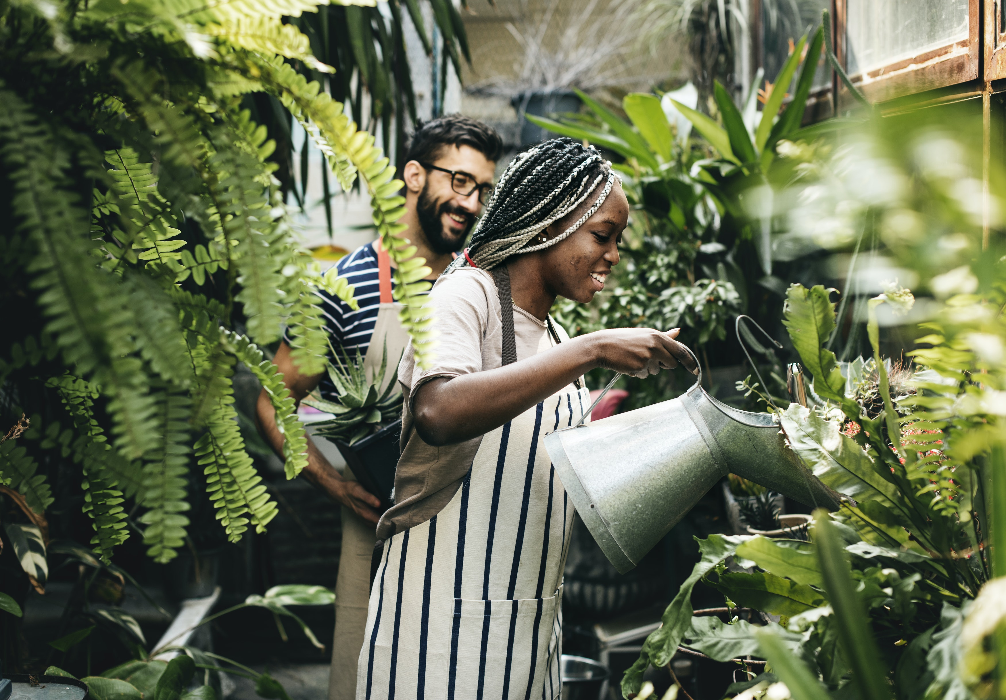 5 ways to give your garden some TLC to attract new tenants