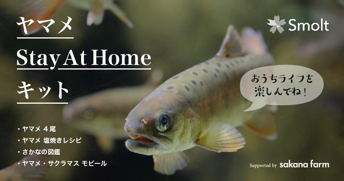 ヤマメStay at Homeキットを発売します