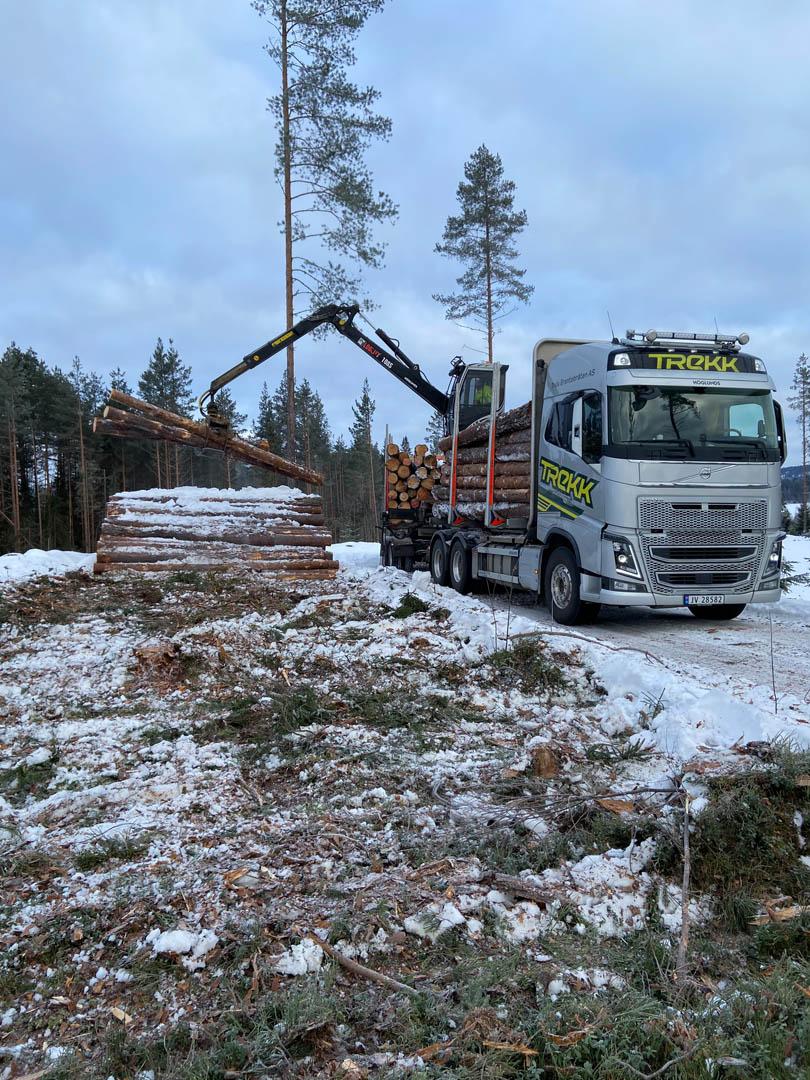 Bilde av en av tømmerbilene tik Trekk Tømmer