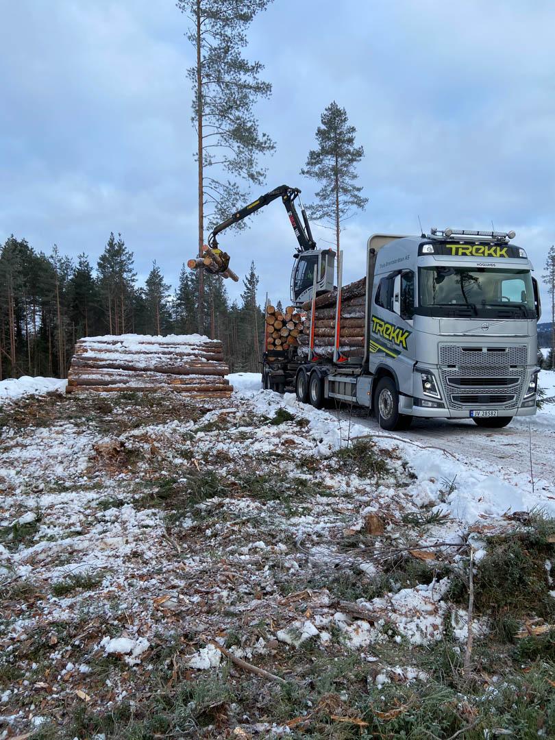 Bilde av en av tømmerbilene til Trekk Tømmer, med kran