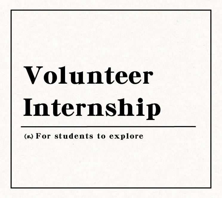 Volunteer Internship