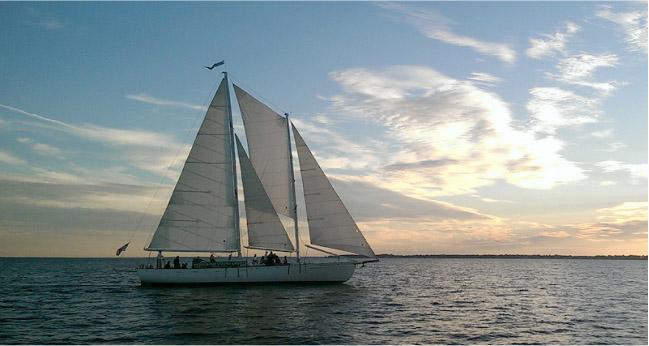 Annapolis Sailing Cruises