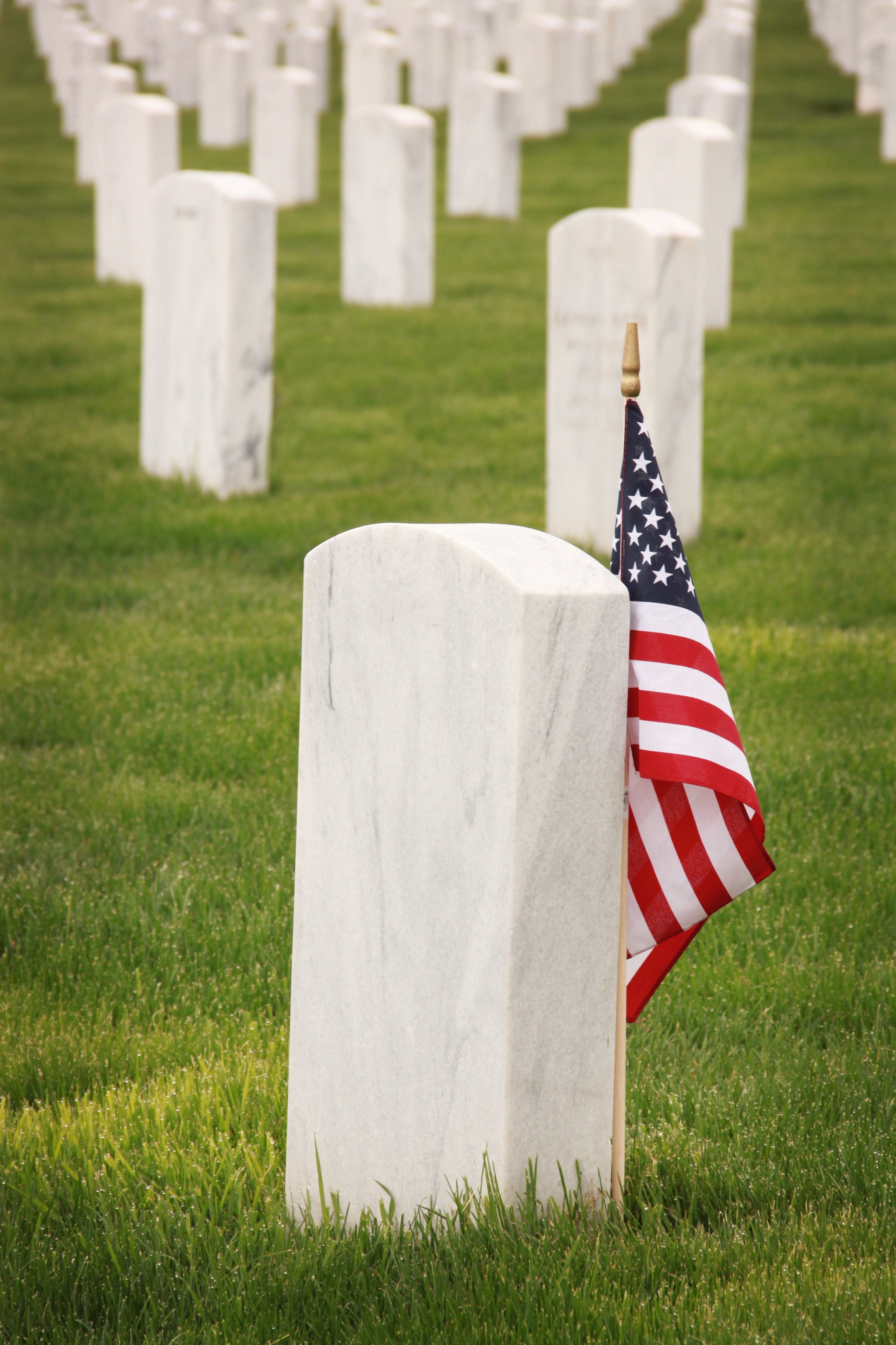Get the English classroom learning about history with this Memorial Day EFL lesson