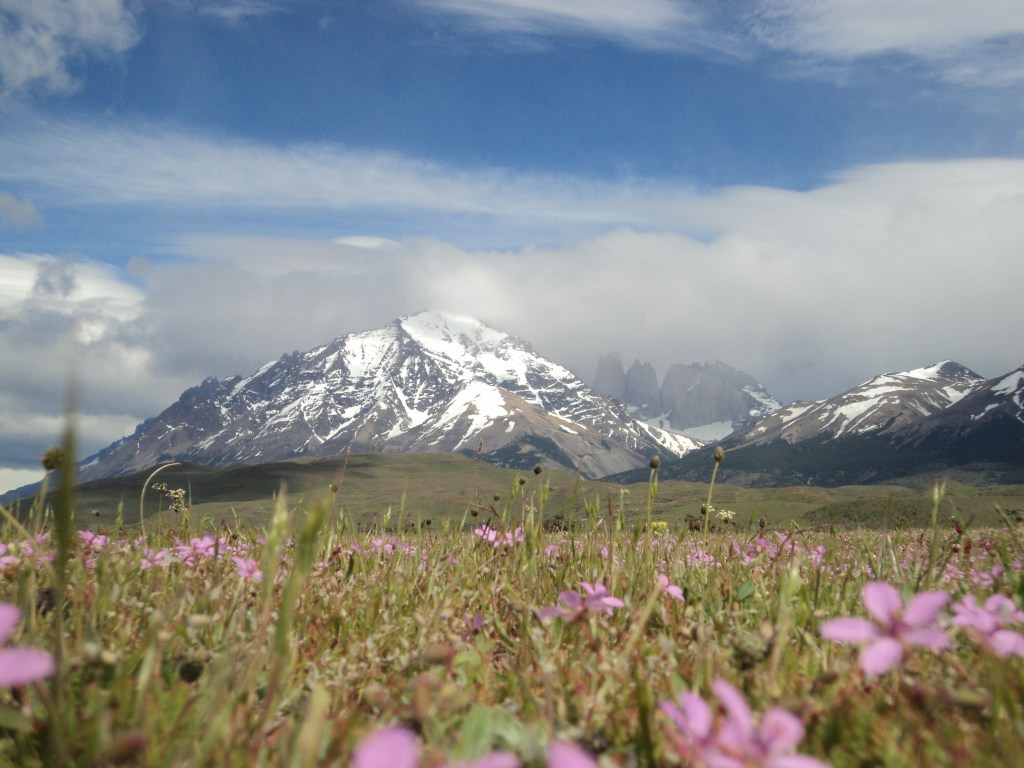 Backpackers can take a day-trip to visit the gorgeous Torres del Paine in Chile