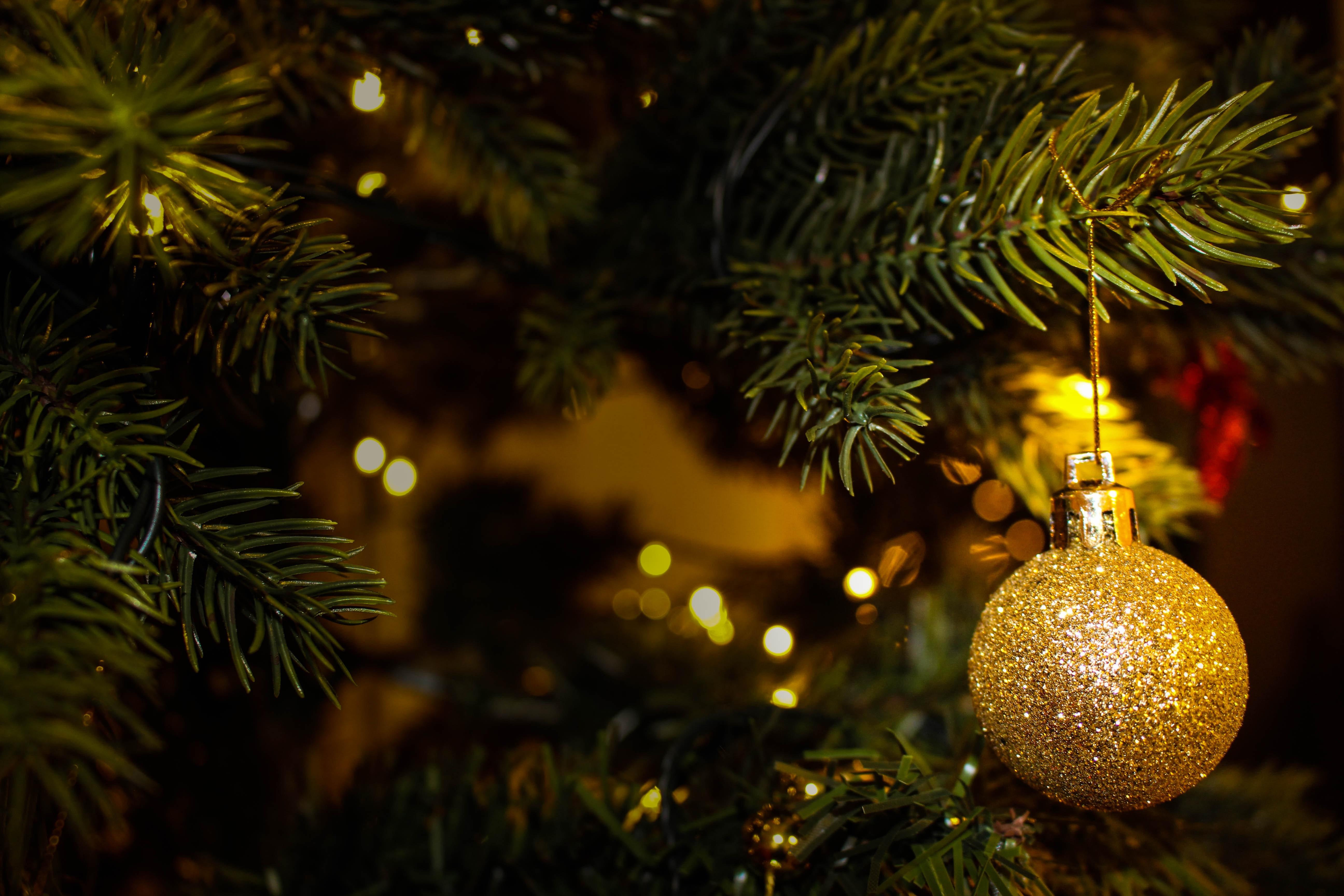 Downloadable ESL Lesson: A Teaching House Christmas