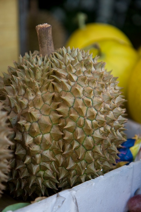 ESL teacher Sherry Ott told her story trying the exotic fruit Durian during her time teaching English in Vietnam