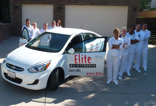 Elite maids team
