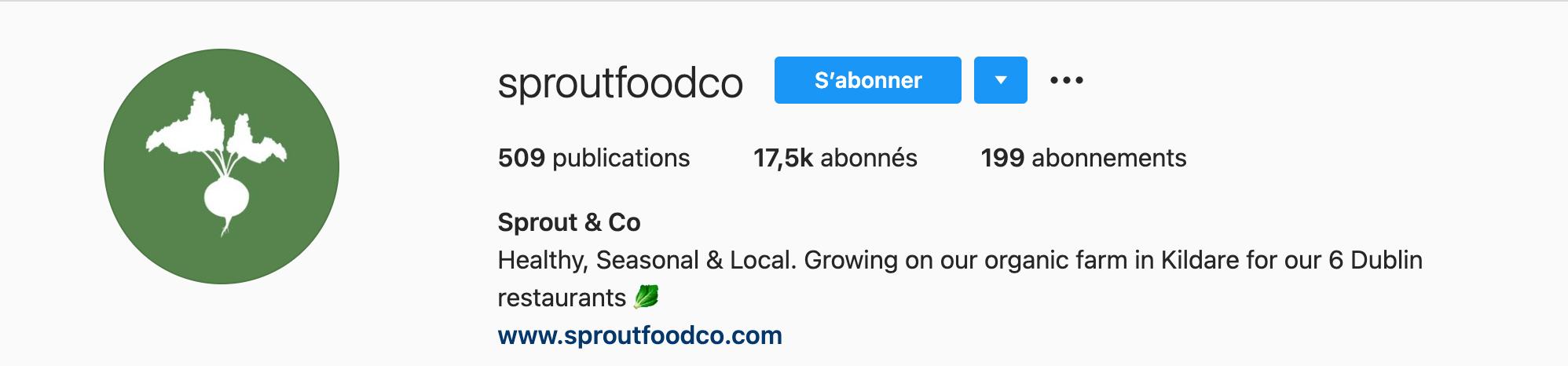 exemple bio instagram