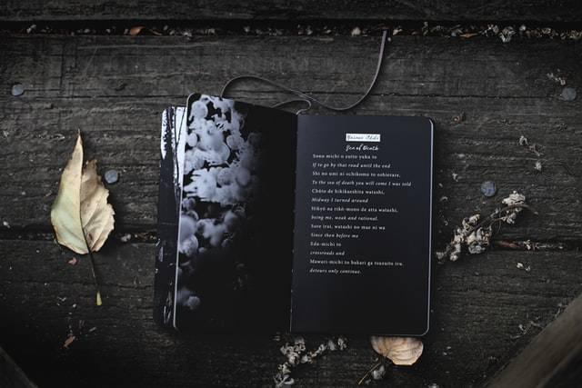 lyrics vs poetry for music