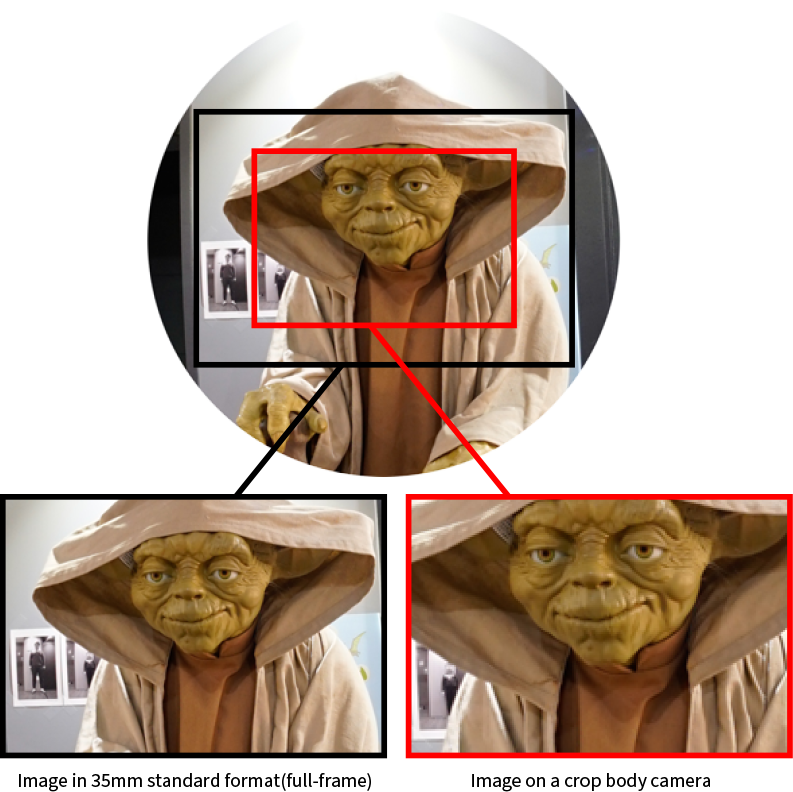 As the images above show, a photo taken with a crop body has a shorter range than a full-frame camera.