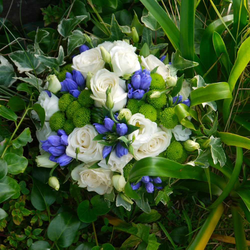 fleurs herbes