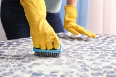 Woman scrubbing a carpet with vinegar and water