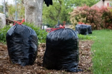 Trash bags after spring cleaning