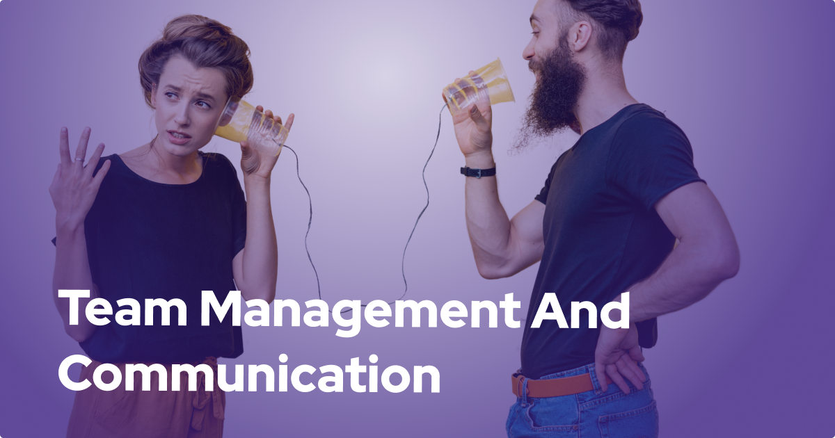Team Management and Communication Structure for a Successful Software Development Project