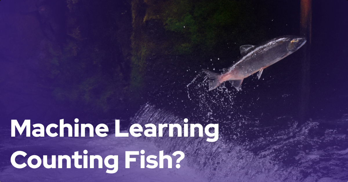 Machine Learning Counting Fish? Using ML for Massive Data Processing Needs