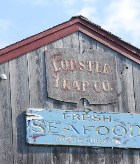 The Lobster Trap Co in Bourne, MA Wholesale