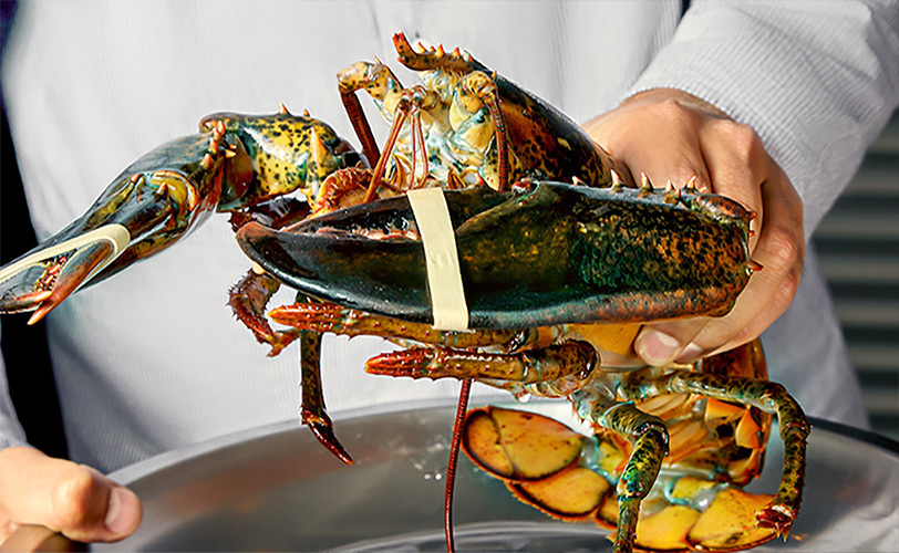 wholesale New England lobster