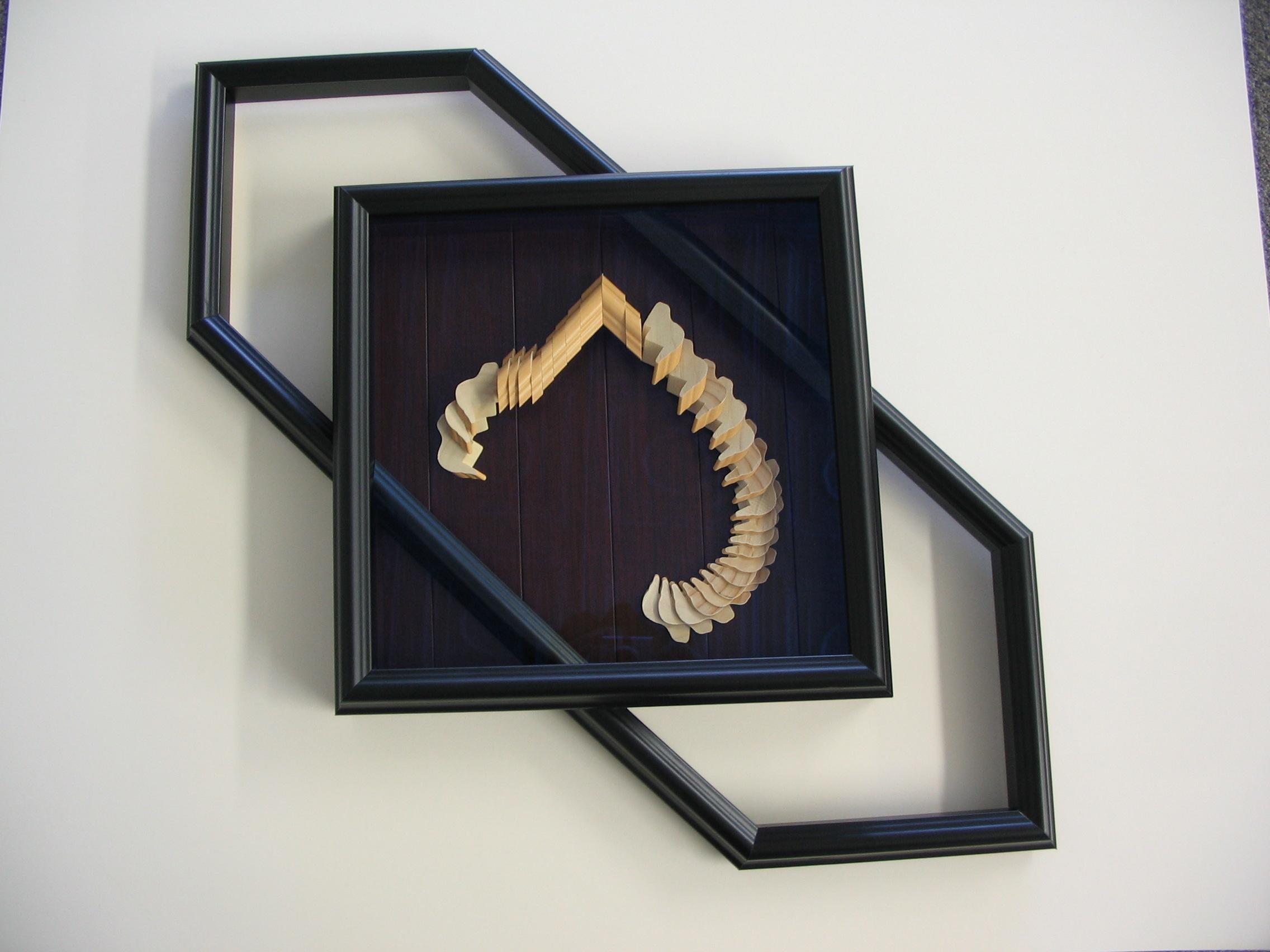 Dinosaur framed by The Framemakers