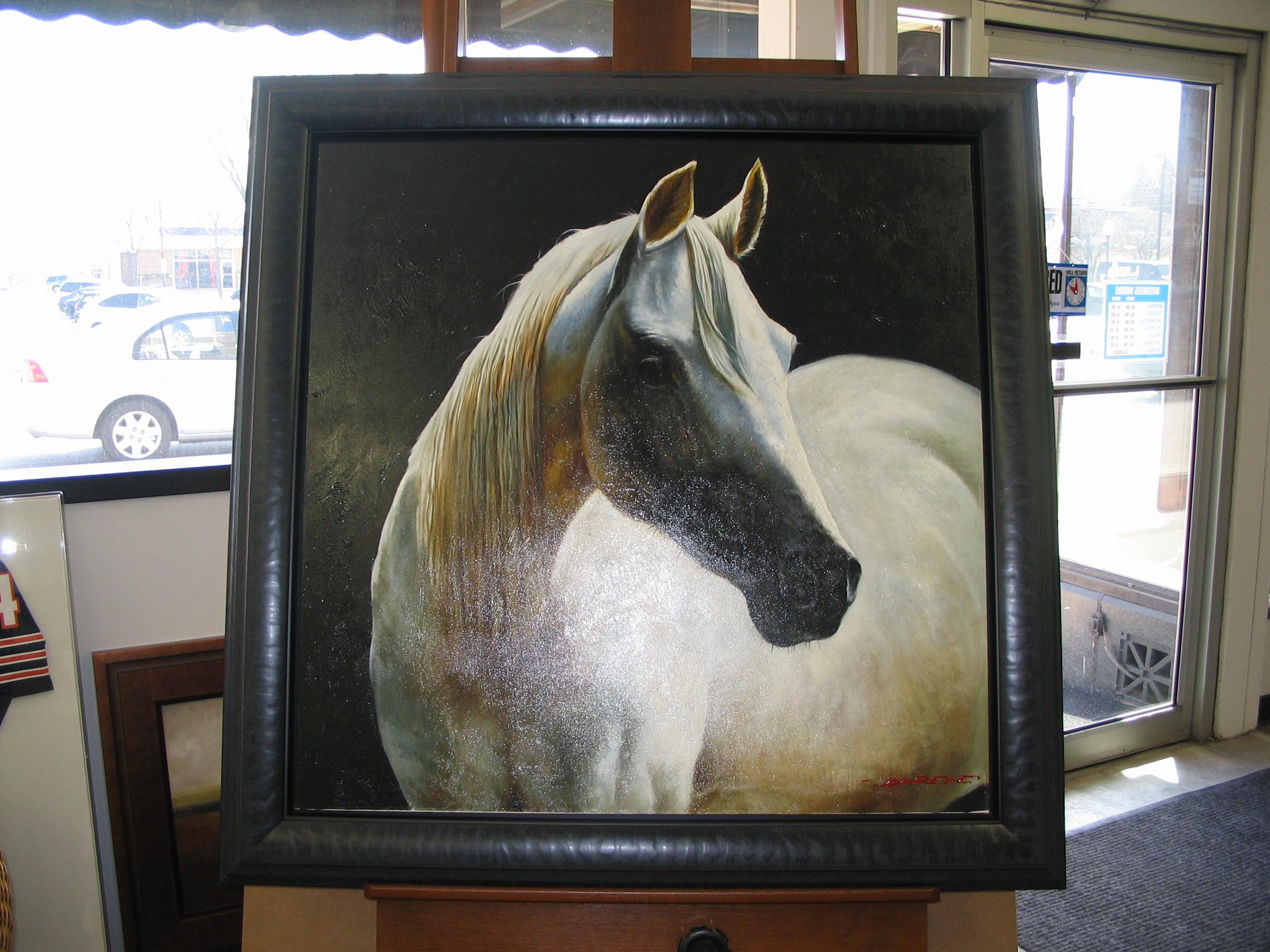 Horse framed by The Framemakers
