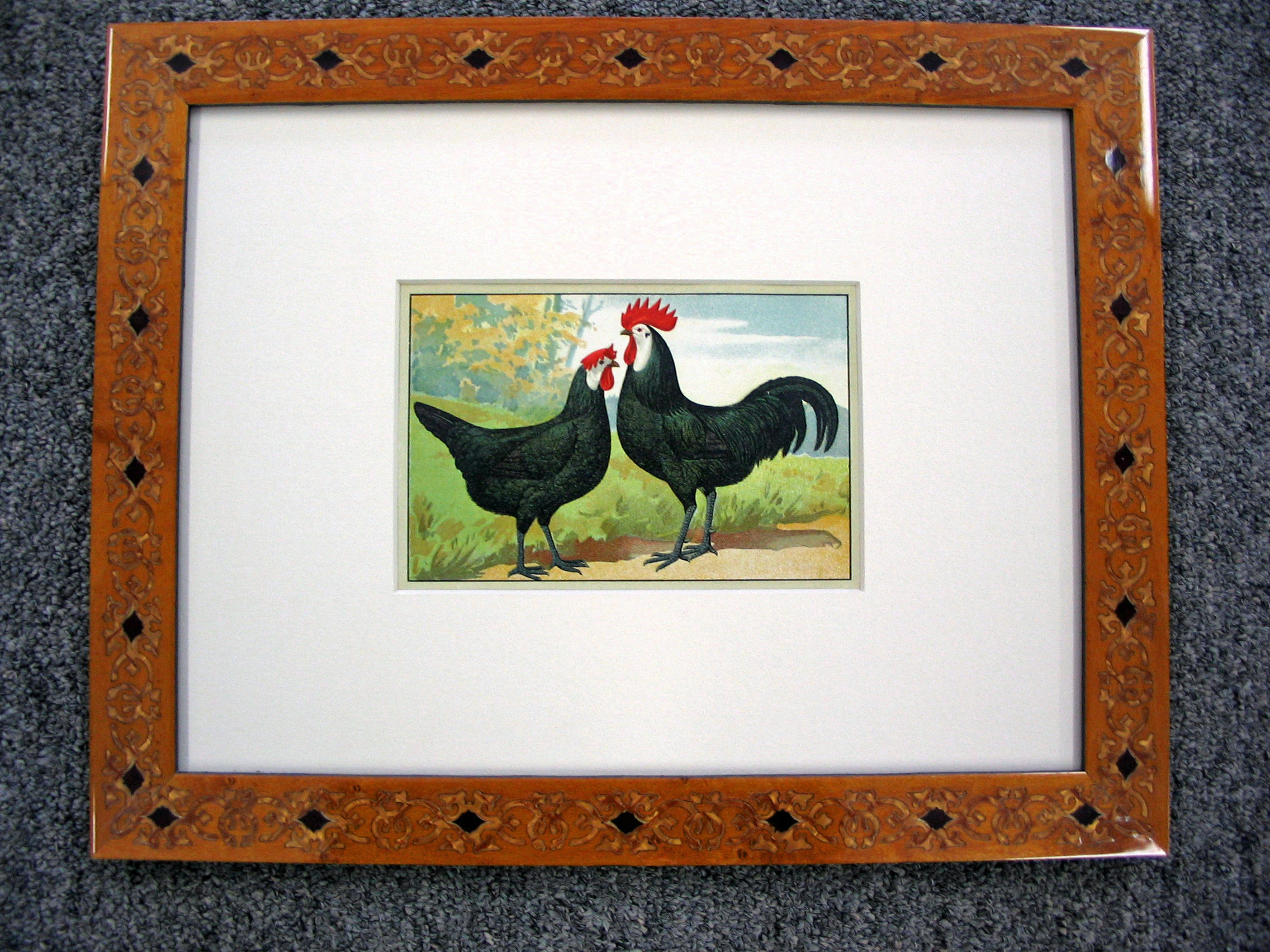 Rooster framed by The Framemakers