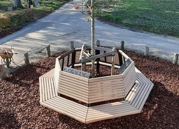 De bank gemaakt van het hout van de oude bevrijdingsboom