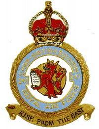 badge 247 Squadron
