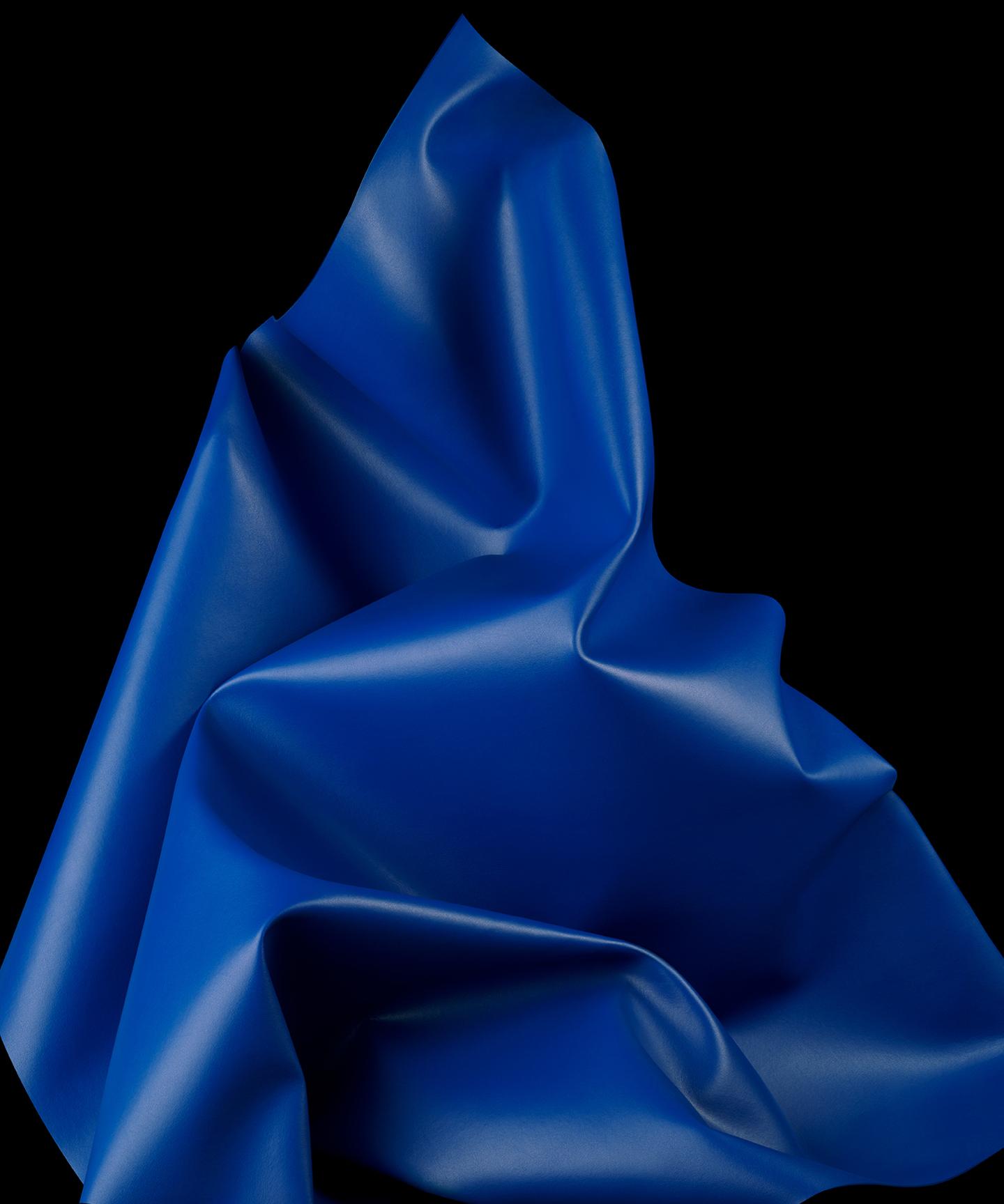 Modern Meadow Blue Material