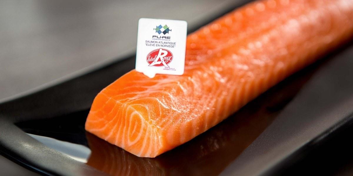 NEWS: Måsøval purchases Pure Farming, acquiring 65 % av Pure Norwegian Seafood