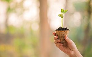 Itääkö omassa tuotepuussasi kasvun siemen?
