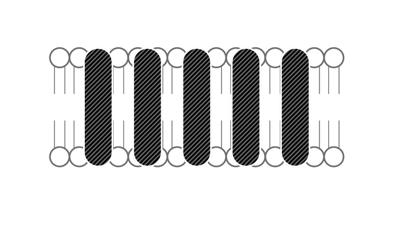 a microscopic illustration of the excepgen technology