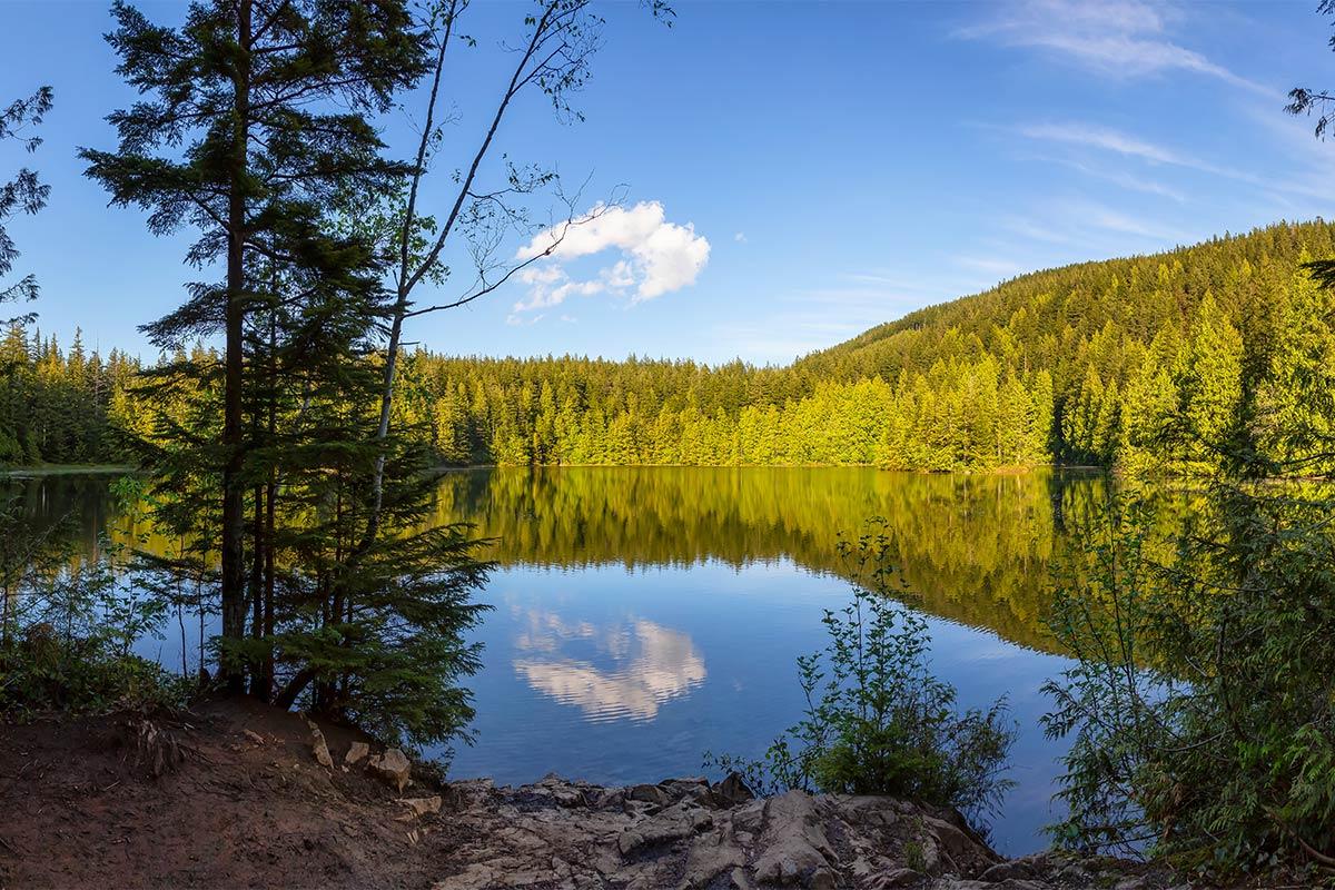 Chadsey Lake, Abbotsford, BC